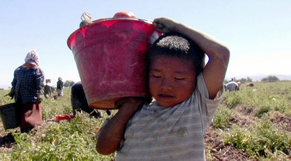 Los Herederos- Les enfants héritiers documentaire Eugenio Polgovsky enfance travail Mexique 21 septembre 2011