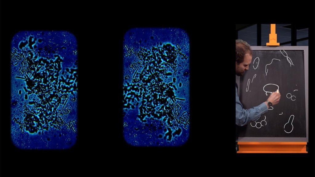 Universcience - Exposition Pasteur - extrait